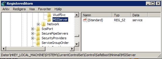 Reg-MSIServer